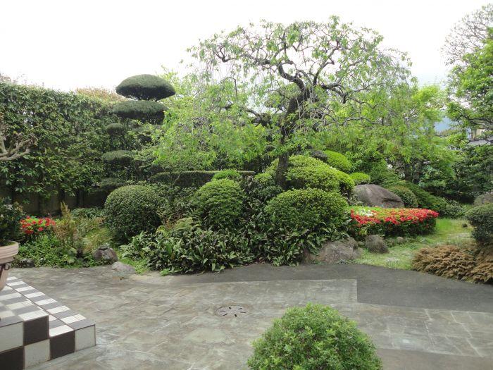 和室から見えるお庭です。別世界に来たような感覚になります。