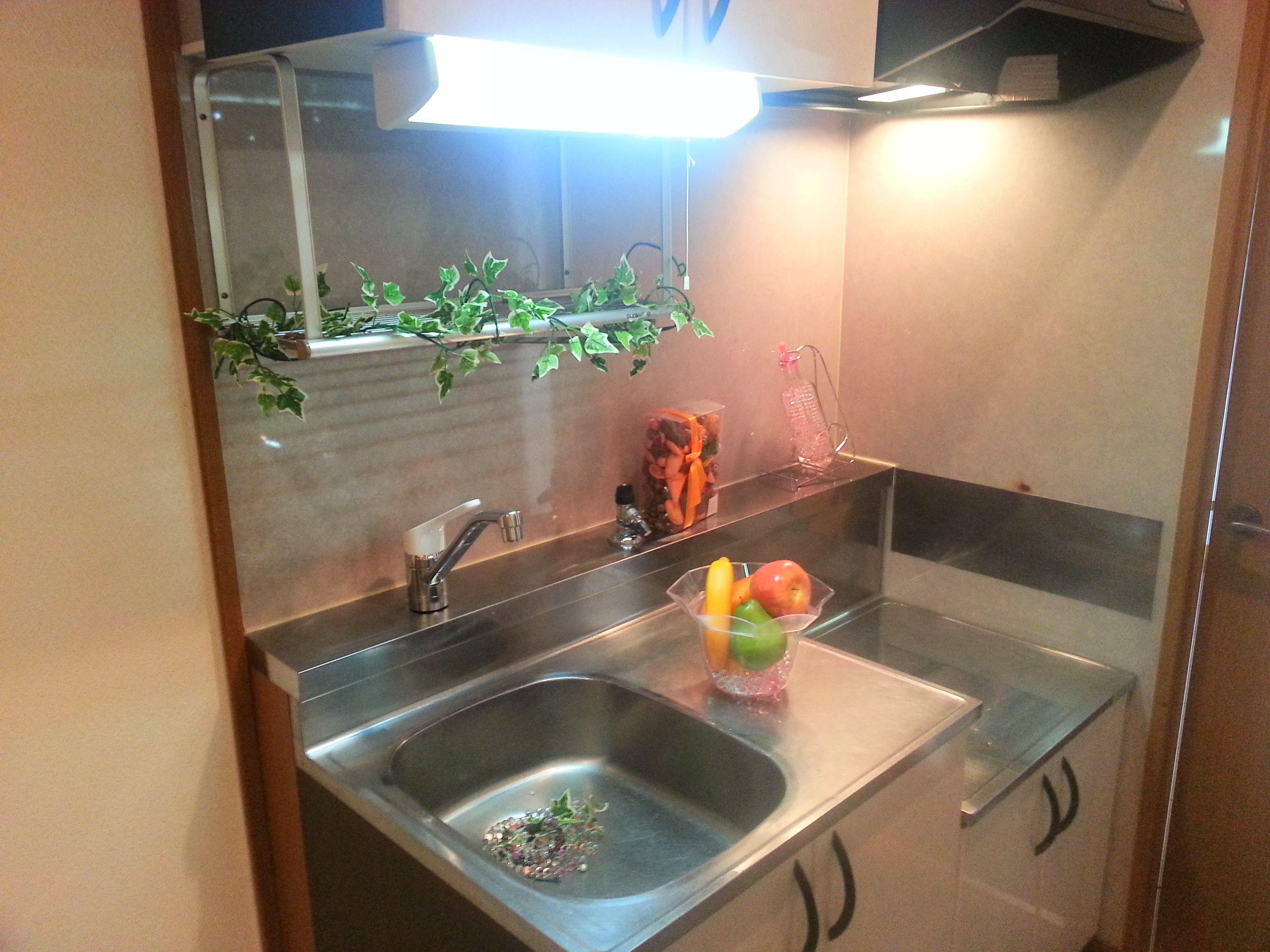 2口ガスコンロが置ける広めのキッチン ※別号室の写真です。